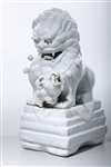 Chinese Glazed Porcelain Fo Lion